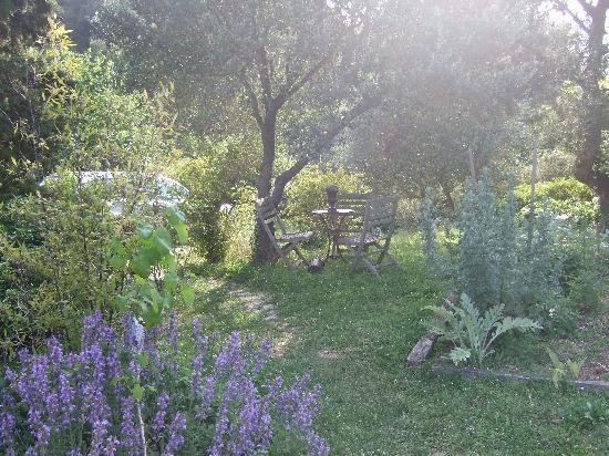 La Vieille Bergerie: garden3