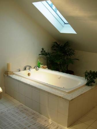 The Guest Rooms at Jones & Jones Ltd. Antiques : Jacuzzi bath