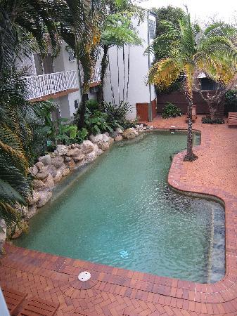Coral Tree Inn: The pool