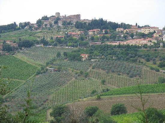Villa Le Barone: View from Garden