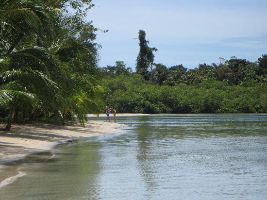 Island Path Panama : Playa Estrella in Bocas del Drago