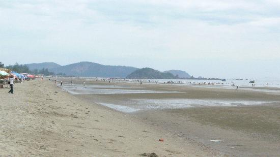 Cua Lo Beach Vietnam  city pictures gallery : Beach Picture of Cua Lo Beach, Nghe An Province TripAdvisor