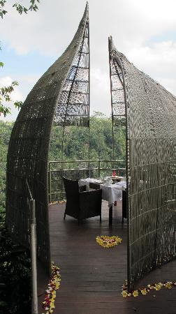 Kedewatan, Indonesien: Breakfast in the Birdcage is really nice too!