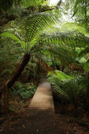 Oceania Tours & Safaris - Day Tours: Maits Rest