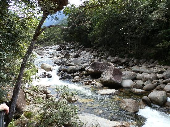 Mossman Gorge: Water