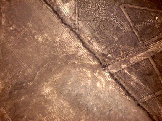 写真ナスカの地上絵枚