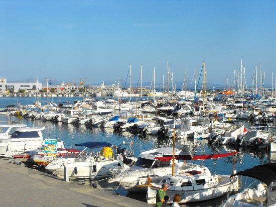 Iberostar Alcudia Park: alcudia port