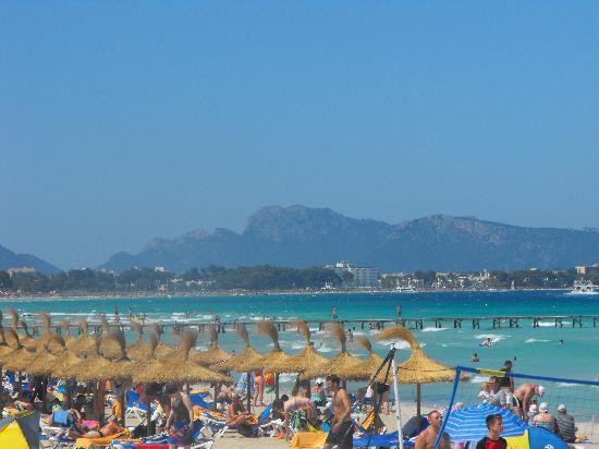 IBEROSTAR Alcudia Park: beach