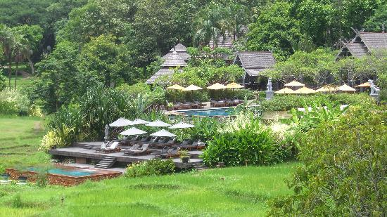 Four Seasons Resort Chiang Mai: view