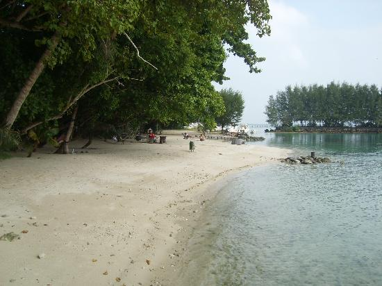Alam Kotok Island Resort: Lagoon and beach and boat yard.