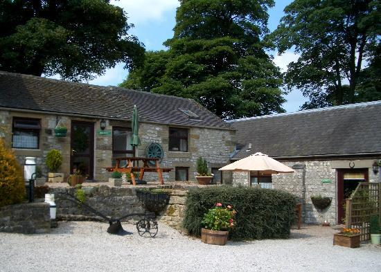 Bolehill Farm Cottages: Patio and Picnic Areas of Other Cottages on Bolehill Farm