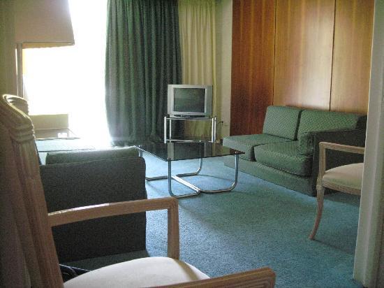 Lion Hotel Apartments: Living area