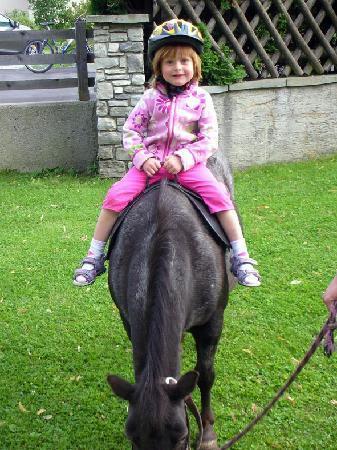 Kinderbauernhof Scharrerhof: Pony reiten am Scharrerhof