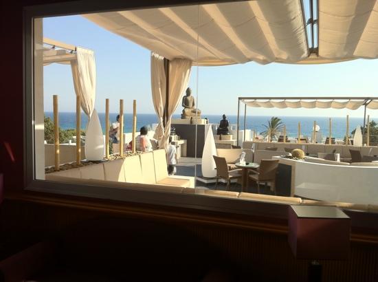 Terraza Lounge Picture Of Hotel Riu La Mola Migjorn