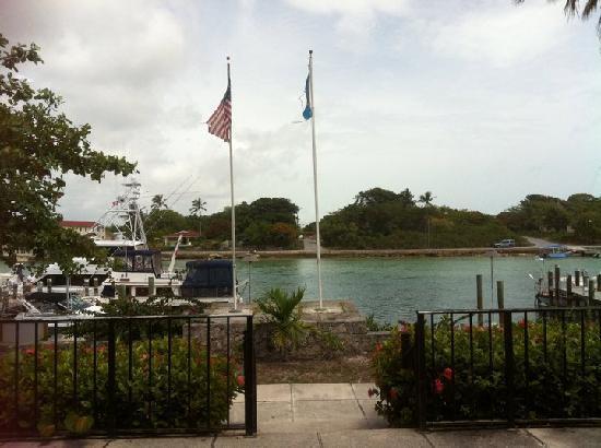 Andros Lighthouse Yacht Club and Marina: Lighthouse Yacht Club