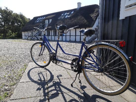 Strandgaarden Badehotel: You can rent bikes
