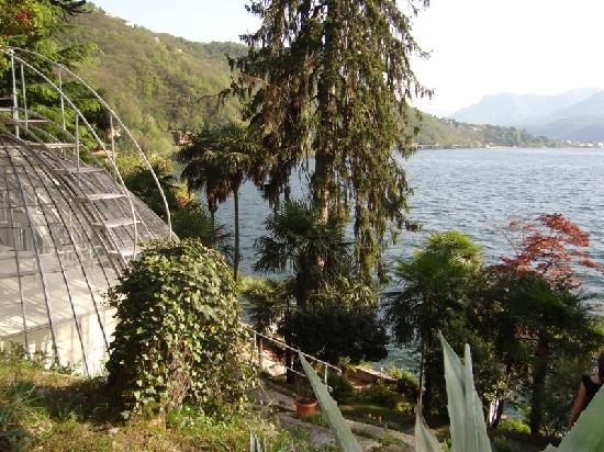 Hotel Camin Colmegna: l'antica serra