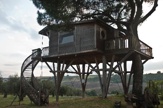 Arlena di Castro, Italia: La Casa sull'albero