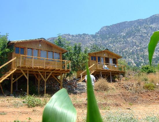 Faralya, Turquía: Cabins with a view