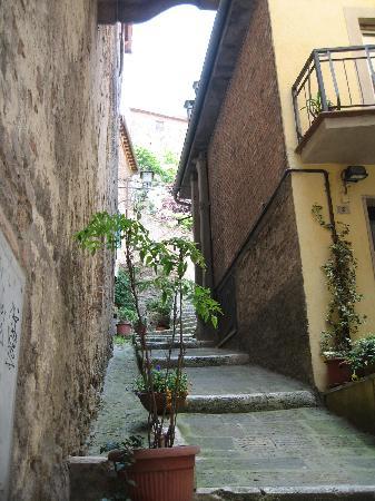 Palazzo Bellarmino: Montepulciano
