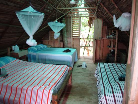 Flowas Bungalows: large bungalow for 6