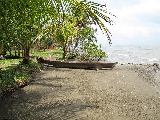 Flowas Bungalows : beach