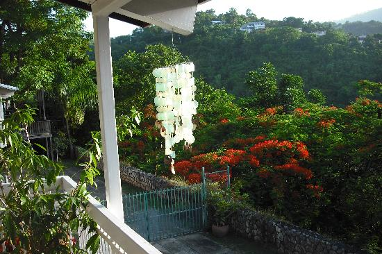 Neita's Nest : Same verandah view...Different season