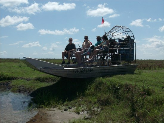 Ray's Airboat Rides: Watching the Gators in Action
