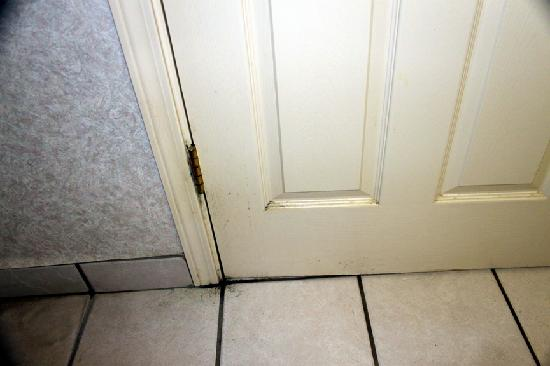The Springs Resort & Spa : More mold in Room # 501