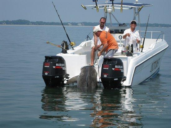 Outcast sport fishing outcast sport fishing for Outcast sport fishing