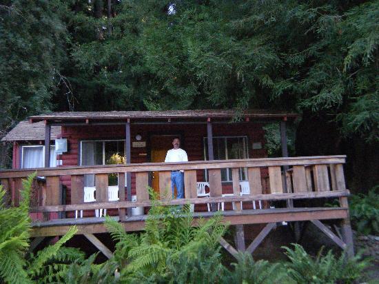 Fern River Resort Motel: cabin in the woods
