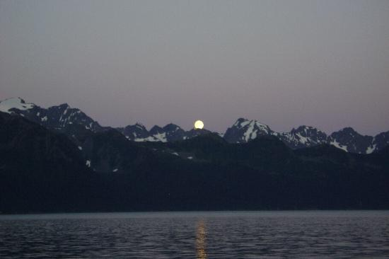 Alaska Saltwater Lodge: twilight view....from the deck!