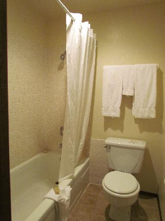 Old Town Inn: Toilet & shower