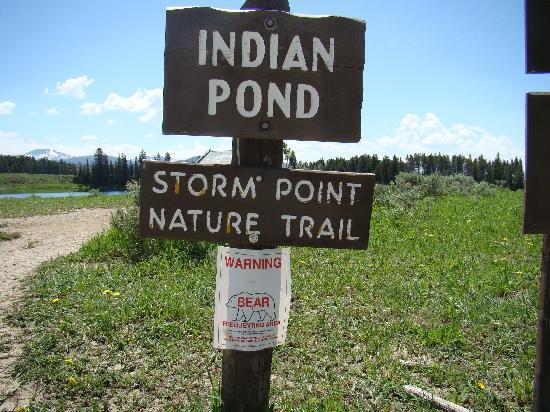 Storm Point Trail Head