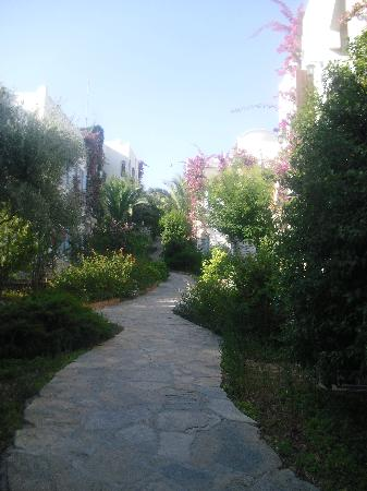 L'Ambiance Resort Bodrum: Walking to our room the different blocks