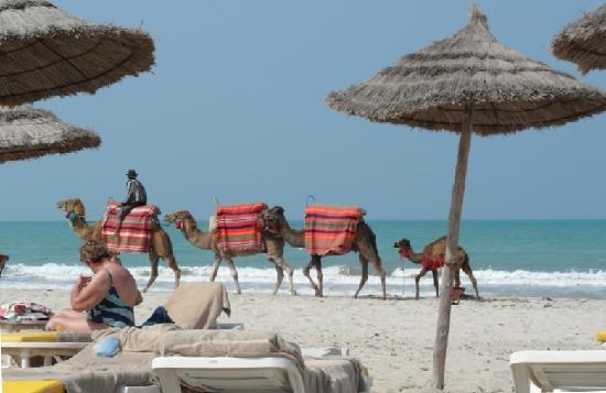 Radisson Blu Ulysse Resort & Thalasso Djerba: La plage