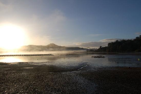 Wainui Lodge: sunrise