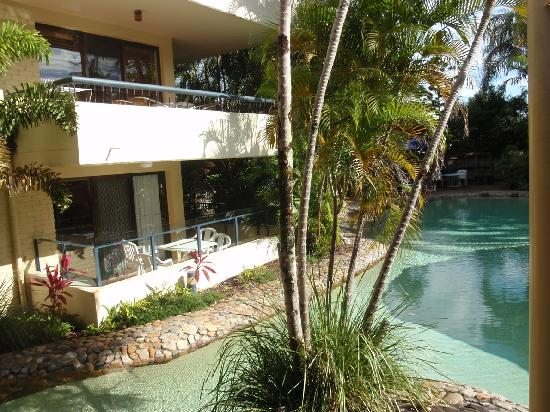 Noosa International Resort: garden & pool area