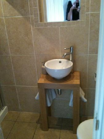 Membland Guest House: Small bathroom, but has everything you need and decorated very nicely