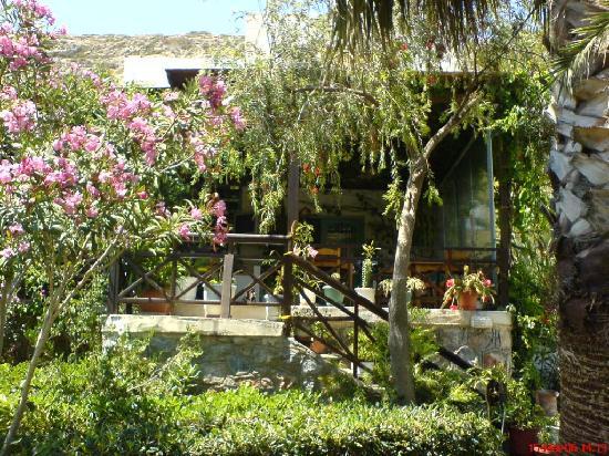 Calypso Hotel: mooie tuin