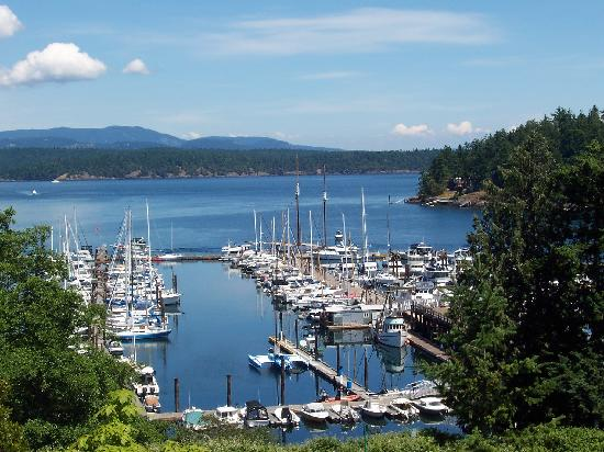 Cannery House Restaurant: The view from Cannery House