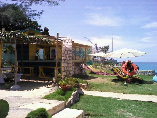 Banana Shout Resort: garden