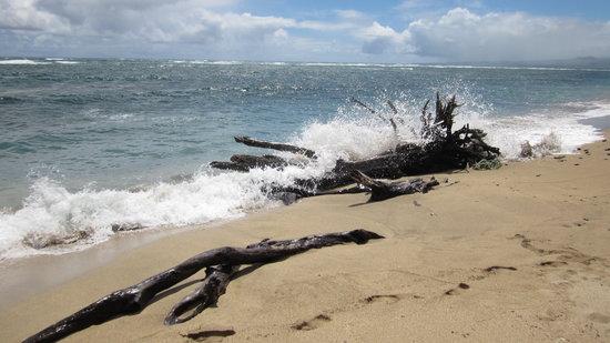 Waihee Beach: East Side of the Beach