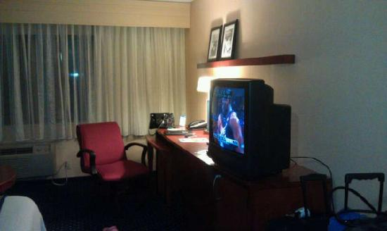 Quality Inn Revere: Desk and TV area. Fridge is in cabinet under TV.