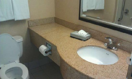 Quality Inn Revere: Bathroom vanity
