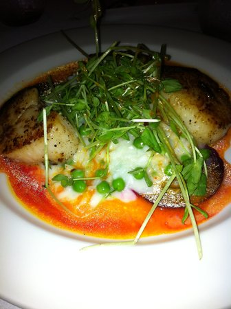 Wine Cask Restaurant : Scallops with Pea Risotto