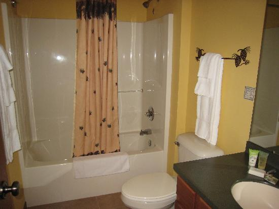 Wild Eagle Lodge: Guest Bath