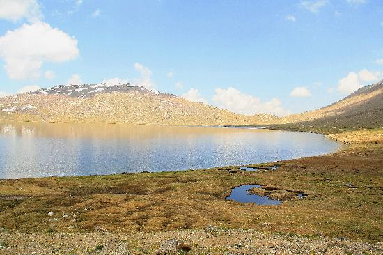 Skardu, Pakistán: Sheosar lake - Deosai plains (altitude +4,100m)