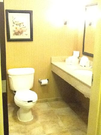 Comfort Suites Kodak: really clean and nice bathroom!!!