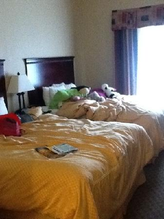 Comfort Suites Kodak: comfy beds that are really nice looking except for our stuff!